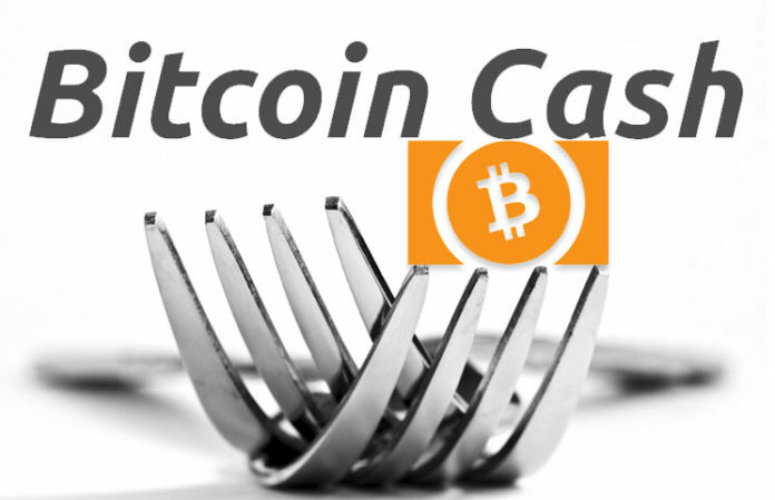 Bitcoin cash hard fork catalanma exchange wallet