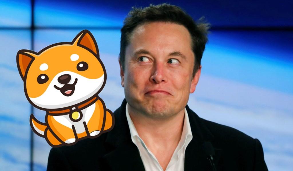 Elon Musk Daddy Doge'yi Uçurdu