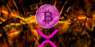 XRP Bitcoin'e Benziyor