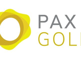 PaxG Nedir?