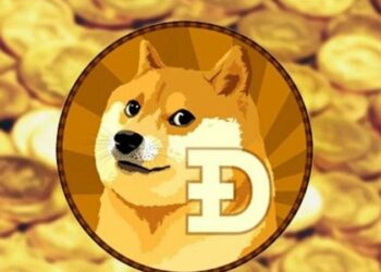 Dogecoin Vakfı Yeniden Faaliyette