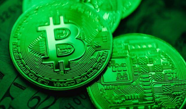 Bitcoin Balinaları Alım Yapıyor