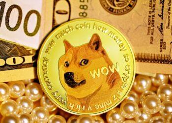 Markus: Dogecoin'e Yardımcı Olacak 2 Önemli Nokta Var