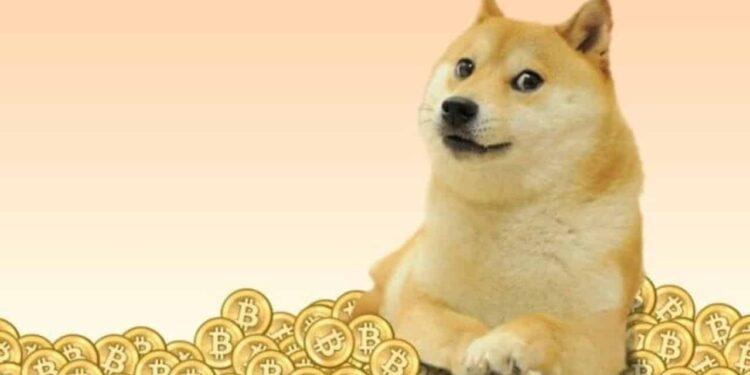 Elon Musk'tan DOGE Topluluğuna Çağrı!